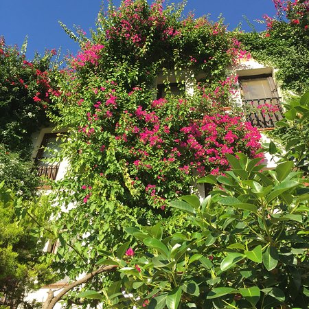 El Vino Hotel & Suites: photo4.jpg
