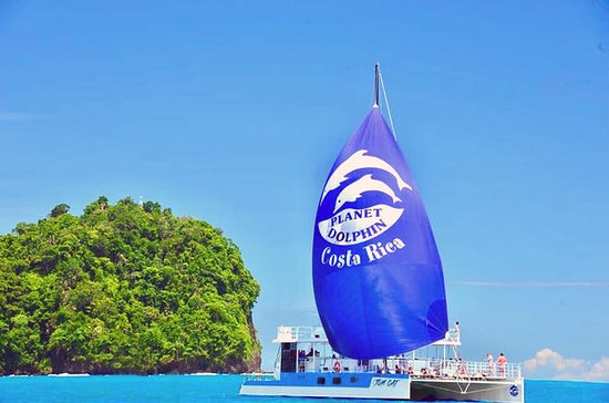 Catamaran Sailing and Snorkeling from...