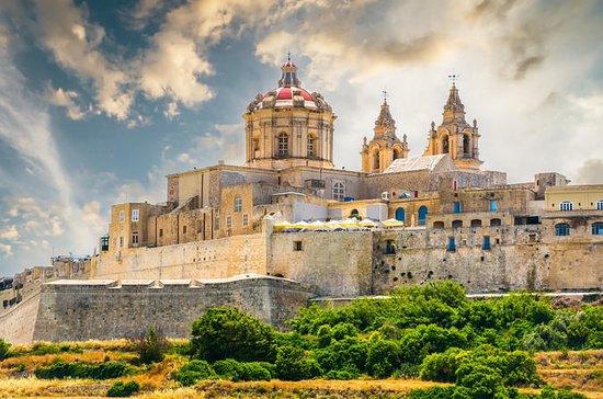 Excursion d'une journée à Malte
