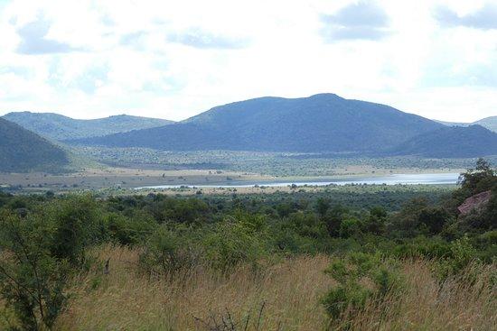Pilanesberg Safaris and Tours: Water access for the animals - Pilanesberg National Park