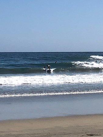 Foto de Mario Surf School