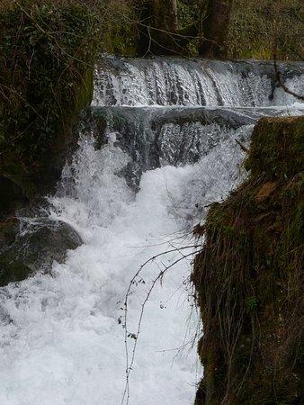 Les Planches-pres-Arbois, ฝรั่งเศส: Cascade sur la Cuisance 1