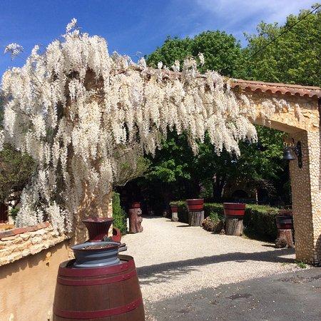 Cause-de-Clerans, Frankrike: Le printemps , c'est la plus belle saison