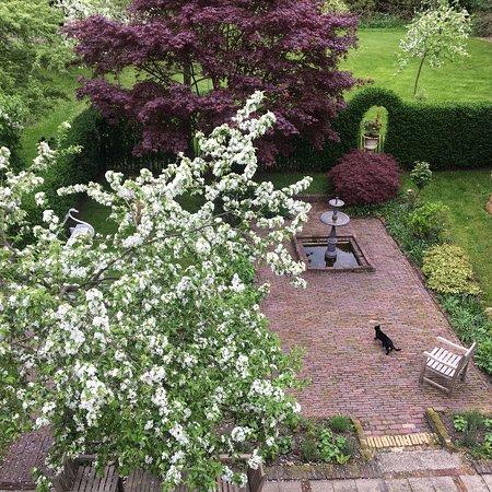Oud-Zuilen, Ολλανδία: photo1.jpg