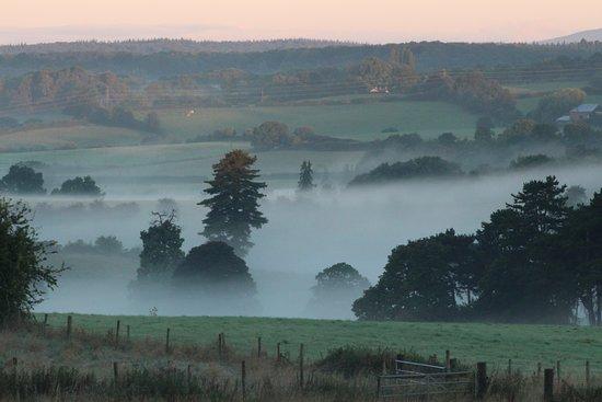 Misty morning - Picture of Praza, Birmingham - Tripadvisor