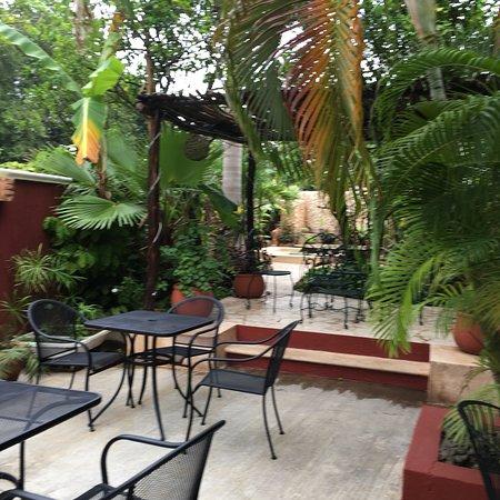 Casa Tia Micha: photo1.jpg
