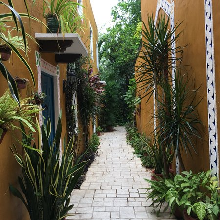 Casa Tía Micha: photo3.jpg