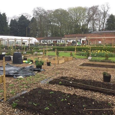 Walton Lea Walled Garden