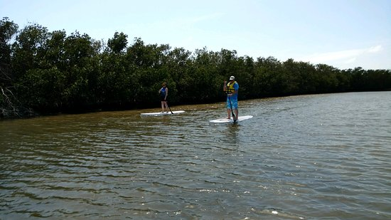 Paddle Out Adventures Photo