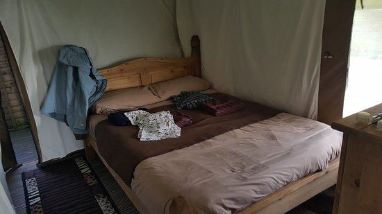 Bear Lodge ภาพถ่าย