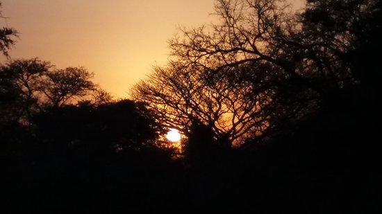 Tembe Elephant Park照片