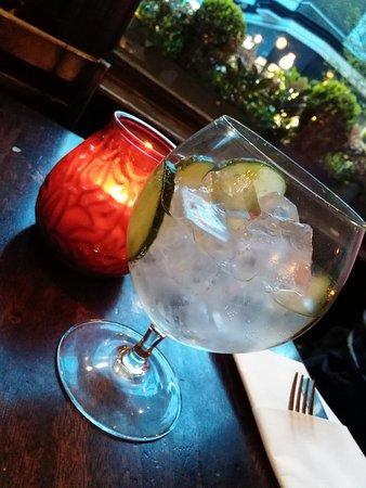 The Blackbird  Un Gin To de grande qualité ! (Hendricks, fever tree  elderflower et c064015d4a1