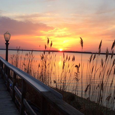 Fager Island Ocean City Reviews