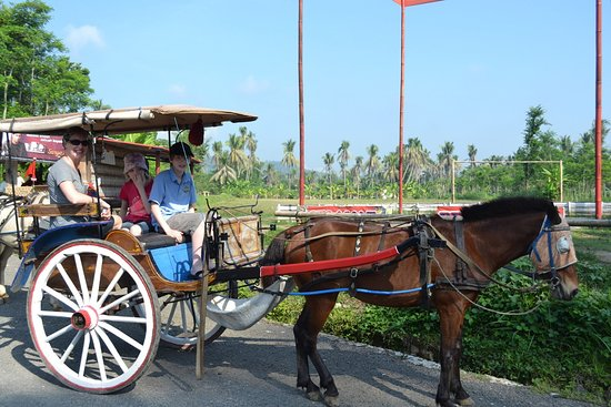 Magelang, Indonesia: Borobudur Village Tour by a Horse cart