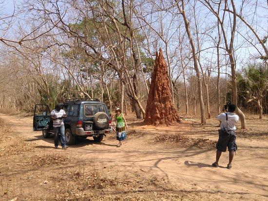 Tour Gambia