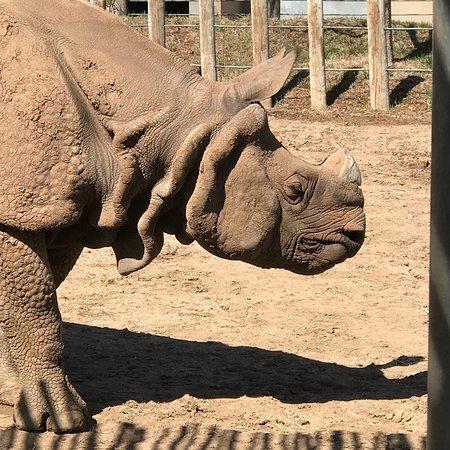 Tanganyika Wildlife Park: photo1.jpg