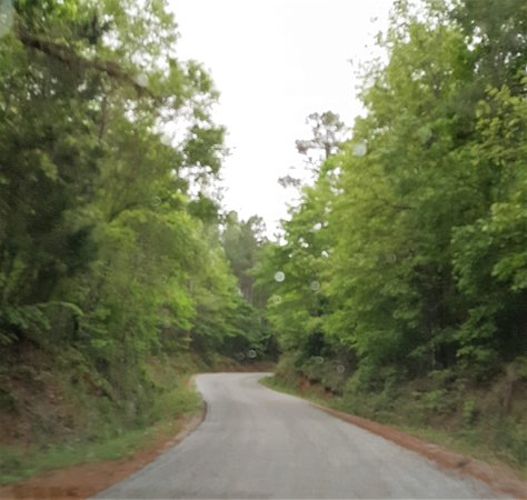De Kalb, MS: Road to the mill.