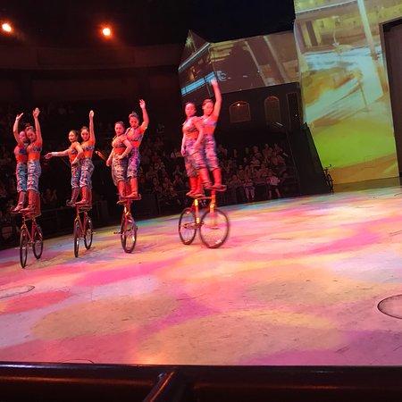 ERA Acrobats: photo2.jpg