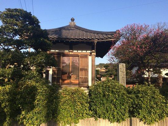 Yuyakushi-do