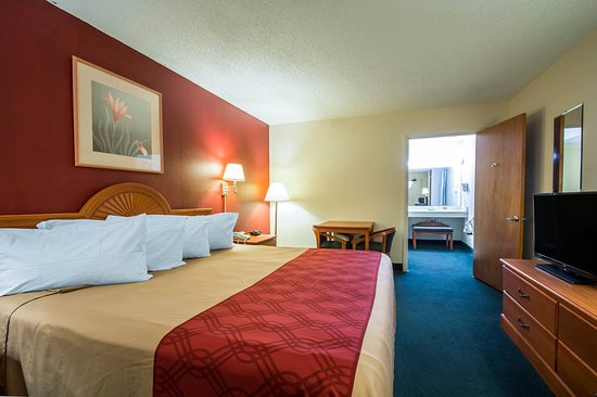 Alachua, FL: Guest room