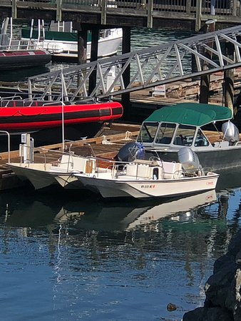 Friday Harbor Boat Rentals