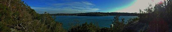 Cremorne Point to Mosman Bay Walk: Beautiful coastal walk