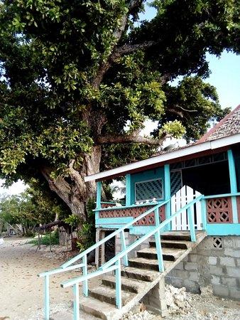Nguna Island, Vanuatu: Your doorway to paradise