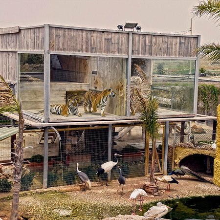 Wildlife Park Malta Restaurant