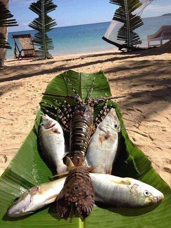 Nosy Sakatia, Μαδαγασκάρη: IMG-20180429-WA0004_large.jpg