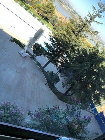 Golbasi, Турция: Leylaklar