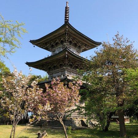 Gochi Kokubunji Temple