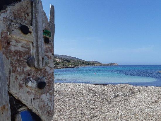 Mar A Beach