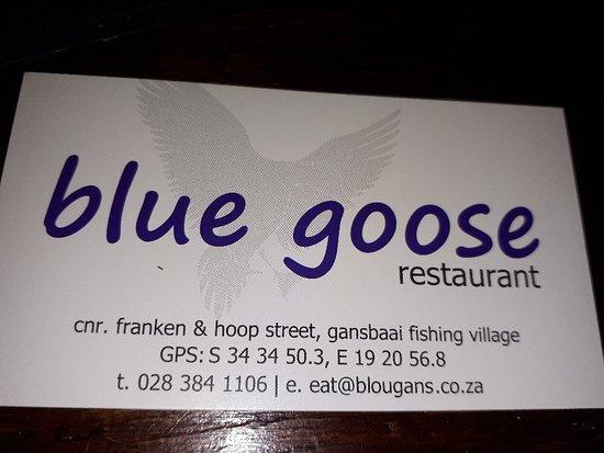 Blue Goose Aufnahme