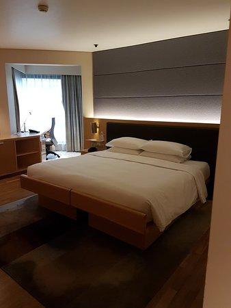 Grand Hyatt Singapore: 20180426_150935_large.jpg