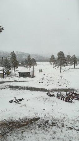Finnmark, النرويج: bedzie zielono