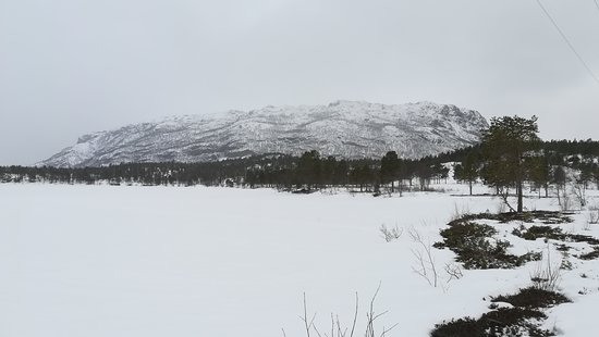 Finnmark, Noruega: piknie