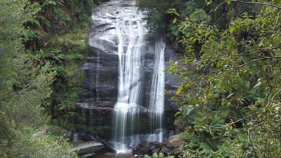 Beech Forest, Австралия: Little Aires Falls