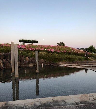 Air Front Oasis Komaki: 噴水池とツツジの丘
