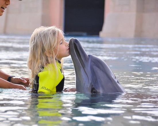 Dolphin Bay: unsere Kleine (4)