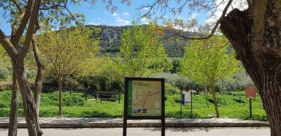 Dona Mencia, สเปน: 20180428_162633_large.jpg