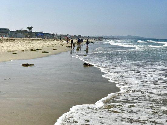 米申海滩照片