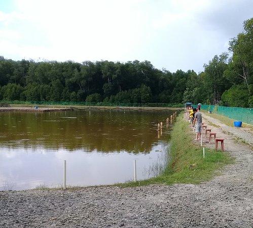 MPR Fishing Pond