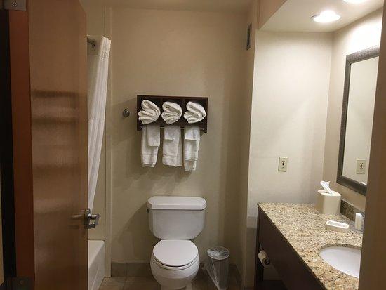 Comfort Suites Seaford: First floor room, bathroom. Ketan Deshpande, Minnesota