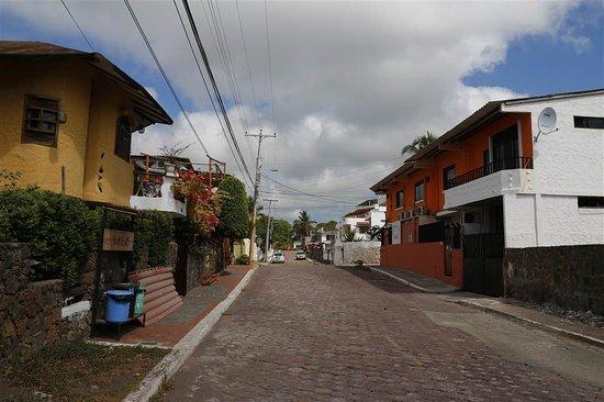 هوتل فييستا: Straat waar het hotel aan ligt