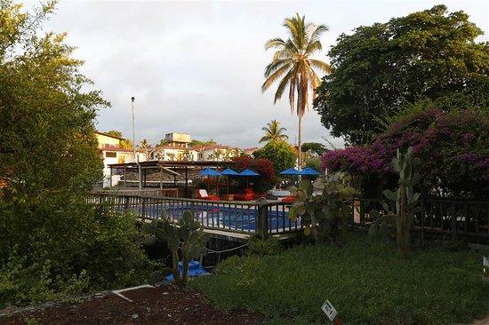 هوتل فييستا: Zicht op zwembad vanaf ons zitje