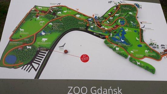 Alueen Kartta Picture Of Oliwa Zoo Gdansk Tripadvisor