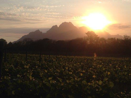 WinelandSightSeeing