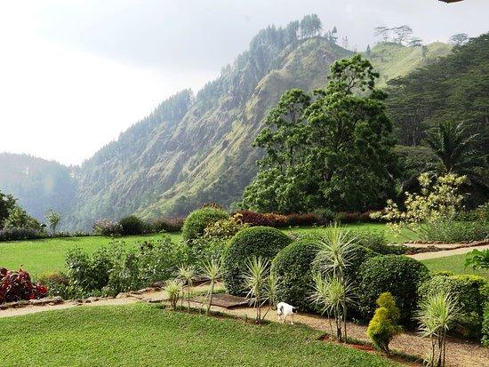 Amaya Hunas Falls Kandy - #120 Japanese Suite - garden view