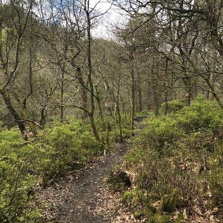 Foto Hardcastle Crags