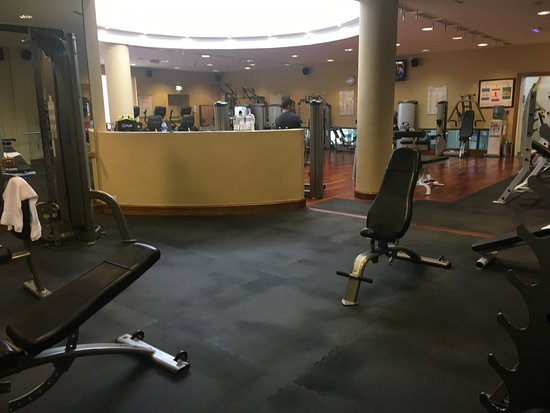 Gyms In Amman Jordan